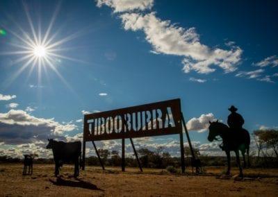 Birdsville Road Trip, Landscape, Tibooburra, NSW_24-08-16_292